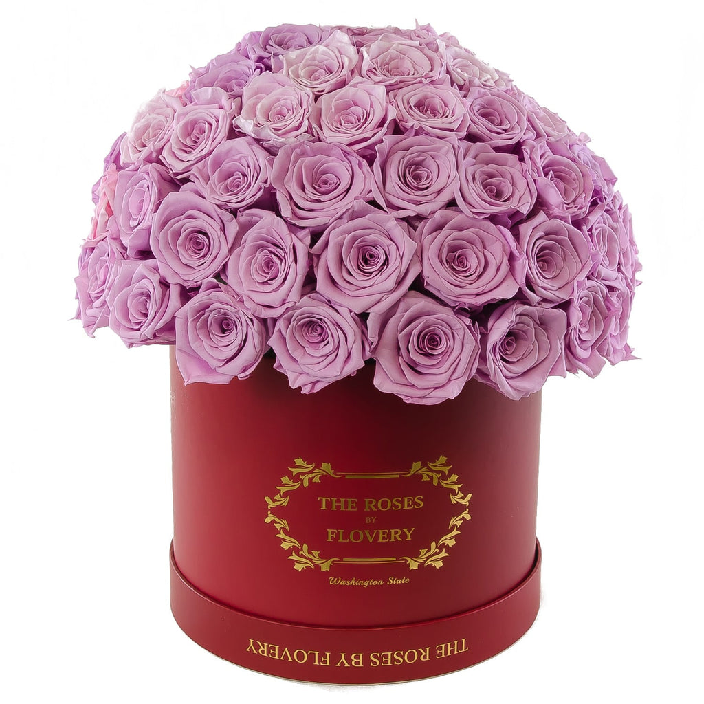 Dome 120 Lavender Roses Red Box