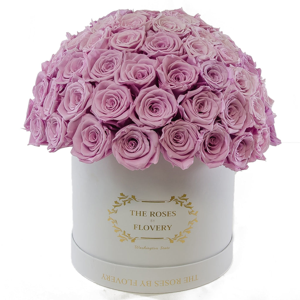 Dome 120 Lavender Roses White Box