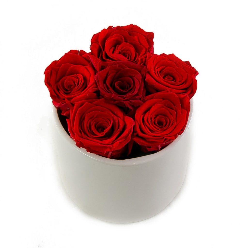 Red Preserved Roses White Ceramic Round Vase