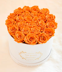 Medium premium preserved orange roses