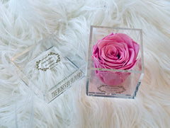 Elegant premium Ecuador preserved pink rose in clear acrylic - Flovery