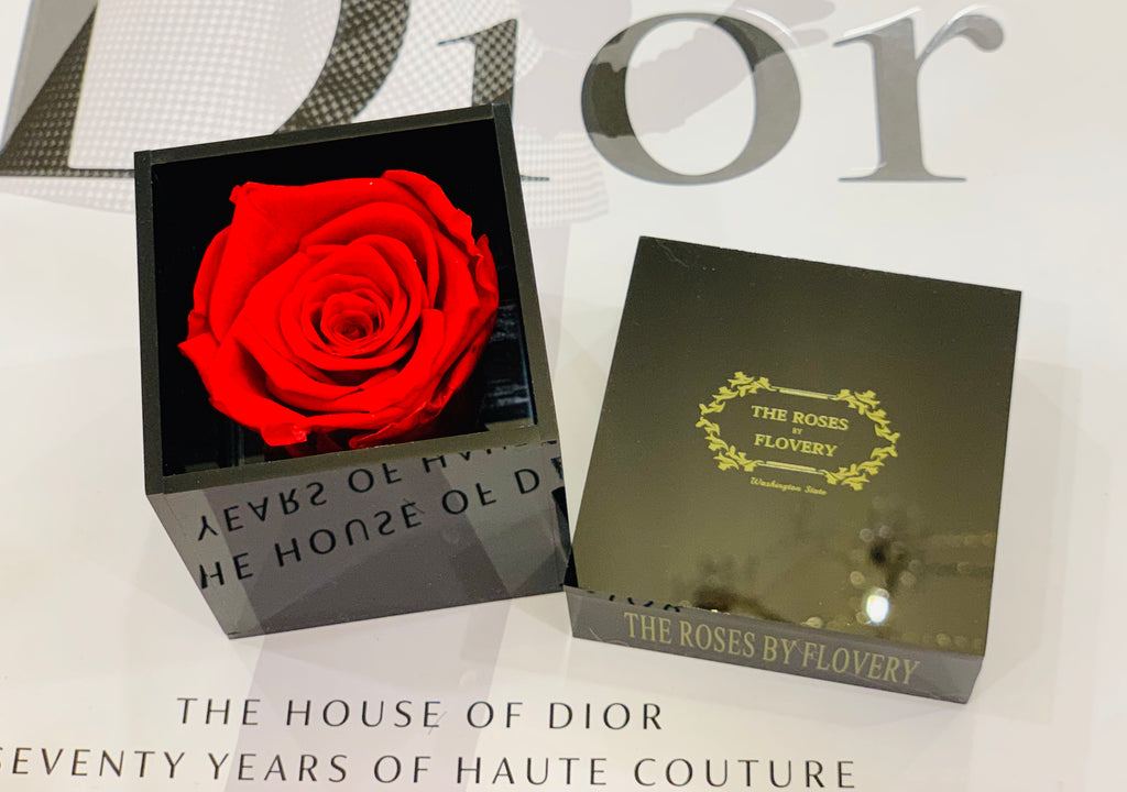 Elegant premium Ecuador preserved red rose in black cube