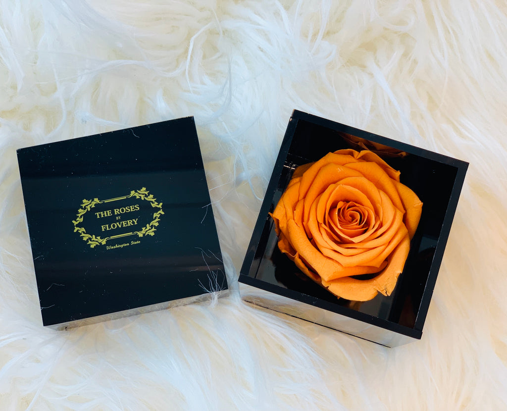 Elegant premium Ecuador preserved orange rose in black cube - Flovery