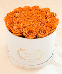Medium premium preserved orange roses - Flovery
