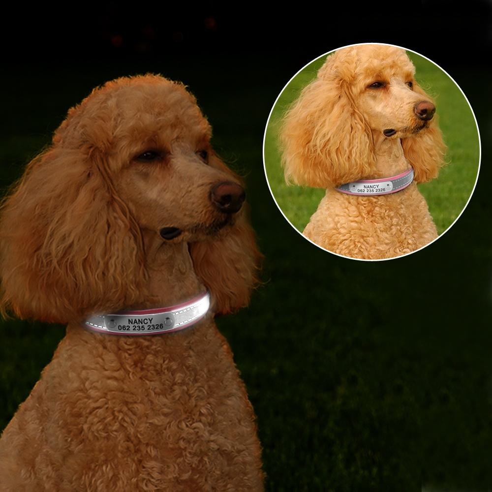 Reflective Personalized Leather Dog/Cat Collar - Available in 4 different sizes & 4 different colors - Handy Treat