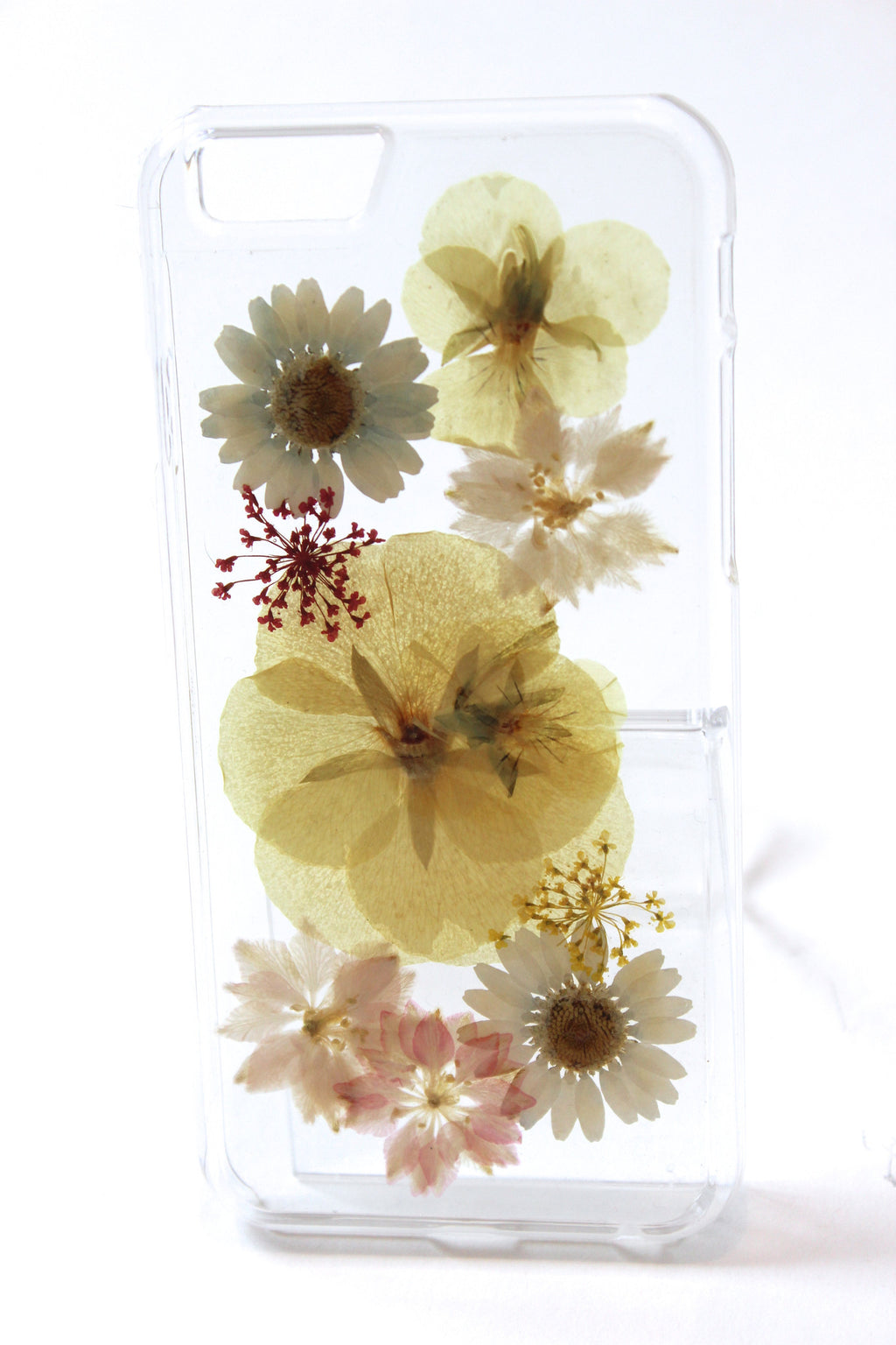 Audrey iPhone 6/6S Dried Flower Phone Case