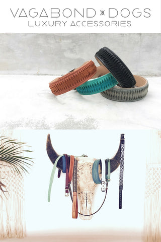 This is my boho bohemian dog collar and dog accessories collection for Vagabond-Dogs.com