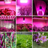 Plants lamps 800W LED Grow Light Panel For indoor greenhouse plant flower fruit Flowering