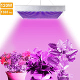 120w Led Plant Growing Lamp for Greenhouse Grow Lamp For Flowering Plant Lighting