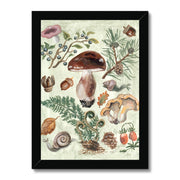 Mushroom Forest Framed Illustration Print