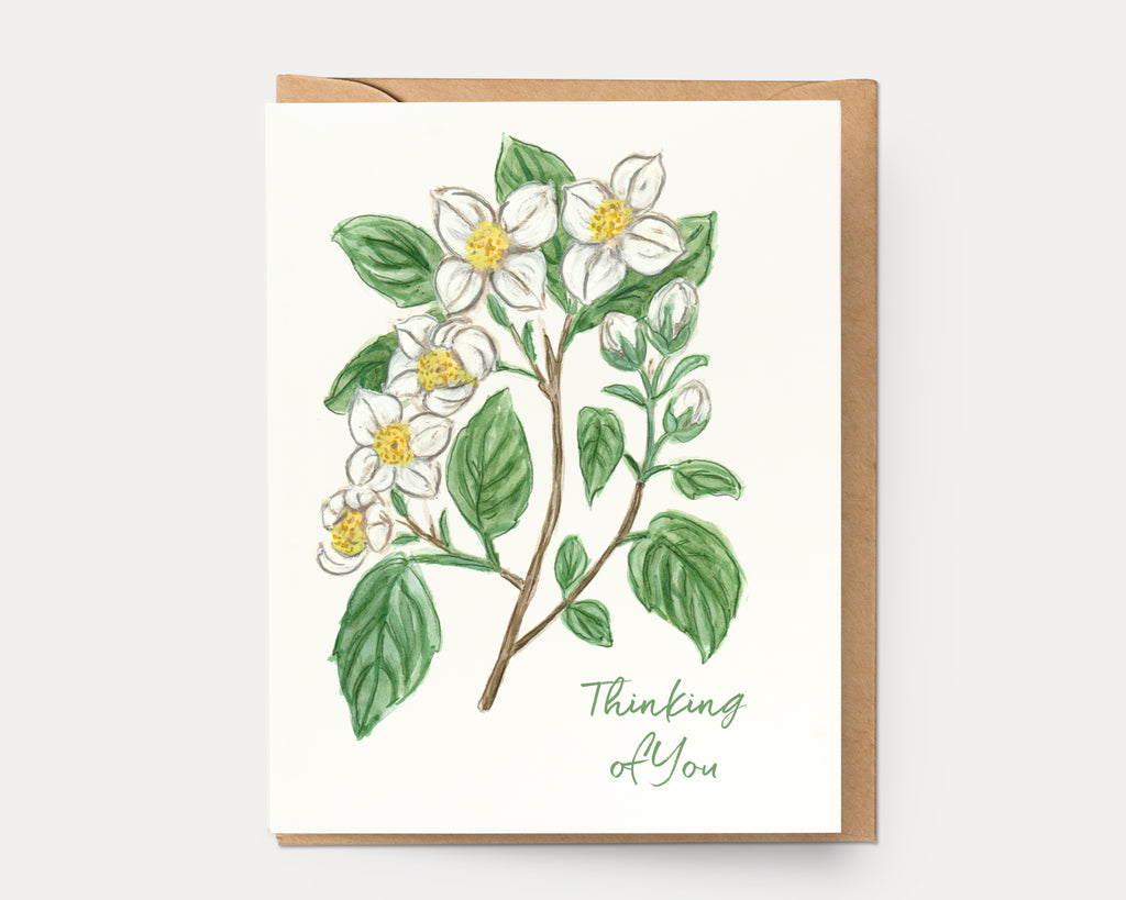 Mock Orange Thinking of You | Greeting Card BOT-111