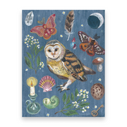 Owl Night | 10 Postcards