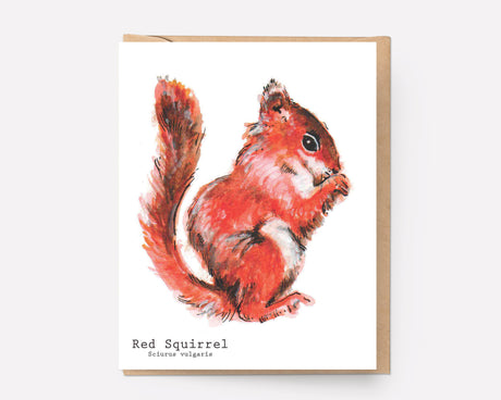 Red Squirrel | Greeting Card N-101
