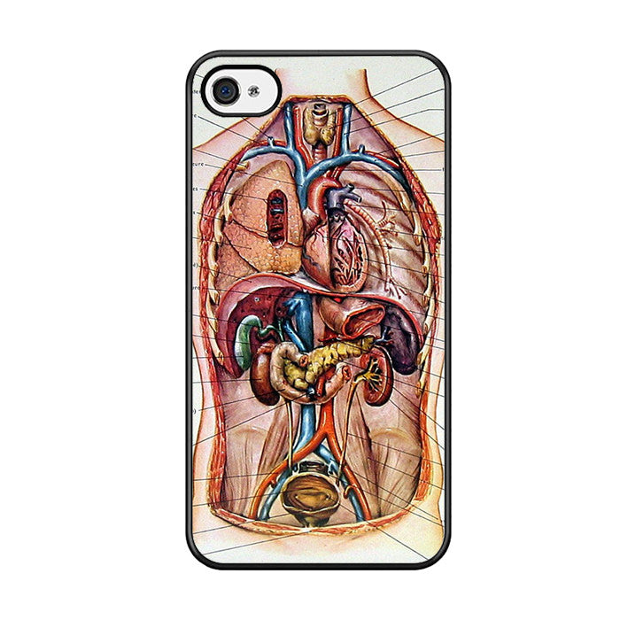 Male Chest Anatomy Diagram Iphone 5 Iphone 5s Iphone Se