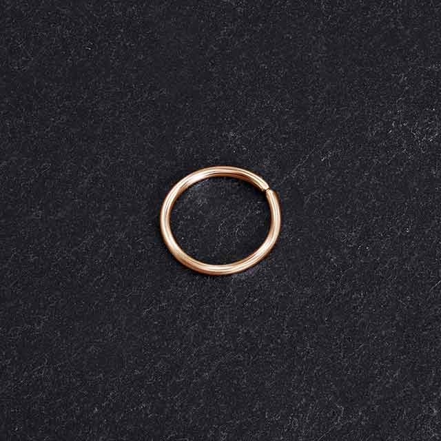 Dainty Nose Ring | PataPataJewelry