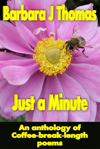 Just A Minute - a Poetry eBook by B J Beach.