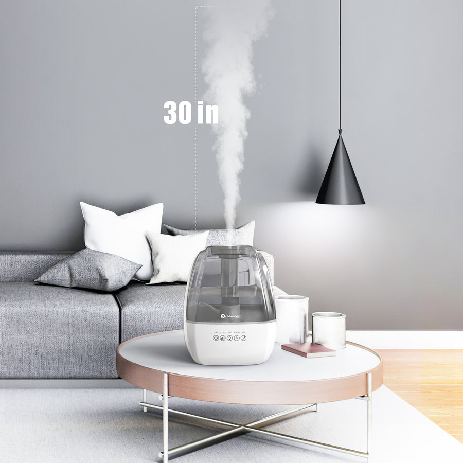 Dreamegg 4.5L Cool Mist Humidifier - Grey