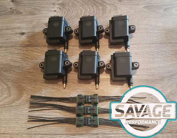 6x Savage Coilpacks