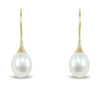 14k white or yellow gold wire back freshwater pearl dangle earrings