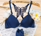 Sexy Lingerie Bra Set New Anterior Cingulate Lace Women Bra Set Sexy Seamless Push Up Bra And Panty Sets Underwear Set