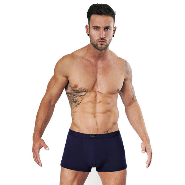 New Men Boxers Cotton Underwear Man Solid Soft Boxer Homme Shorts For Mens Modal Panties Underpants