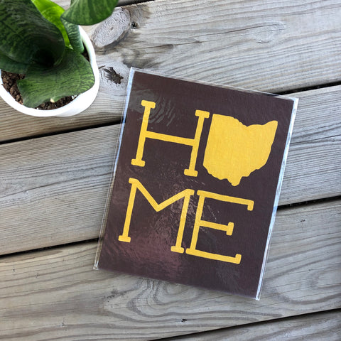 Yellow on Brown Ohio Home Painting