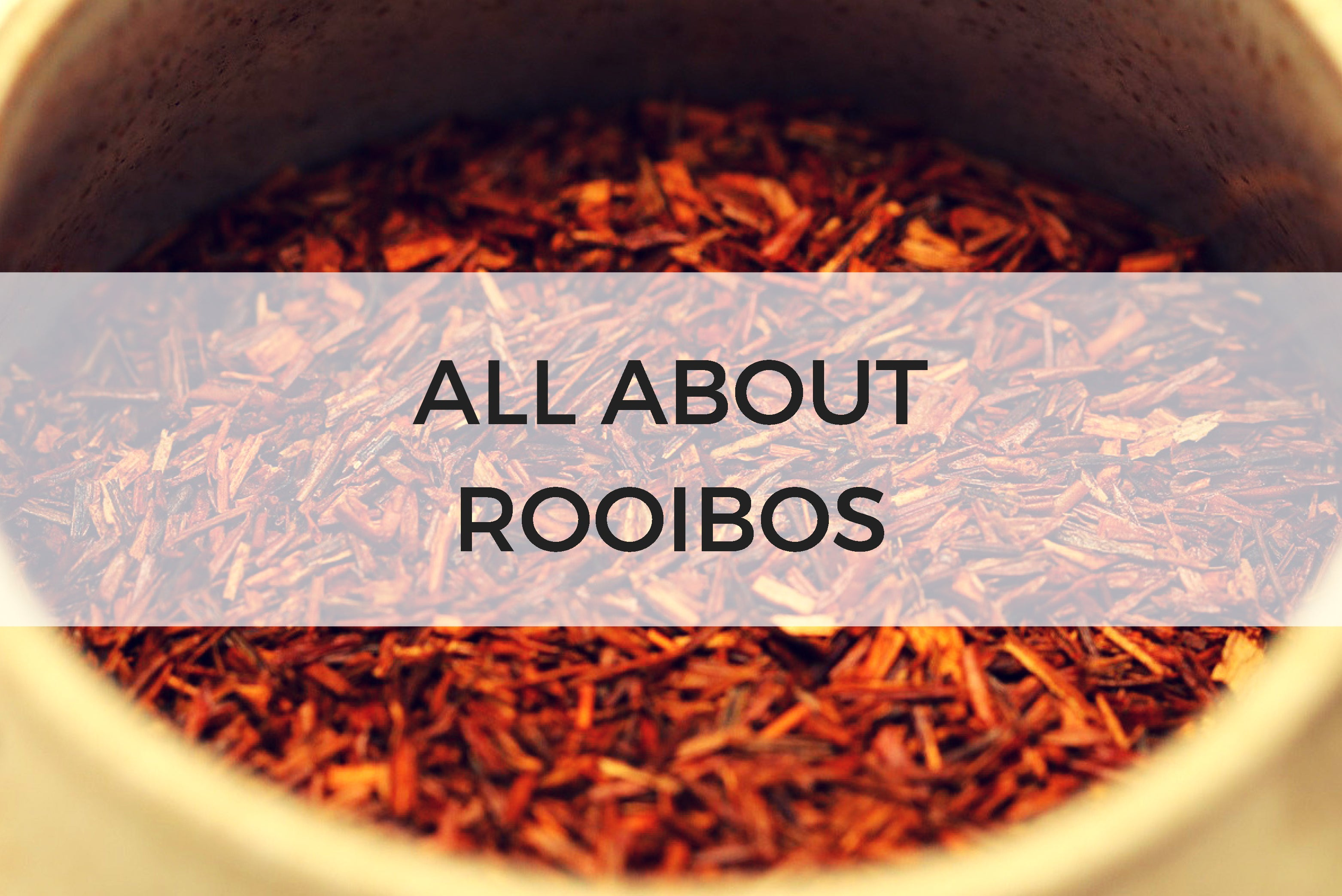All About Rooibos Tea