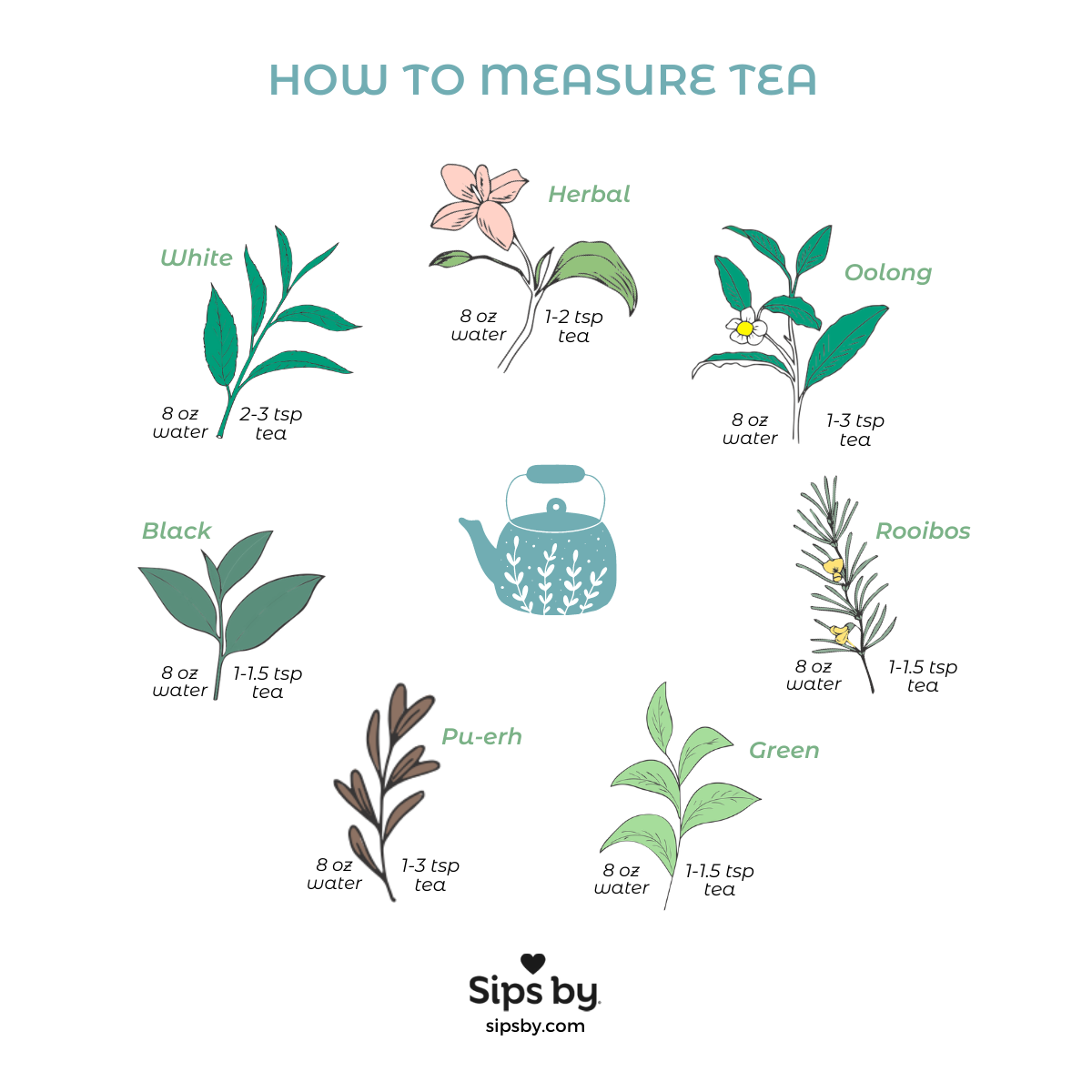 All About Tea Filters