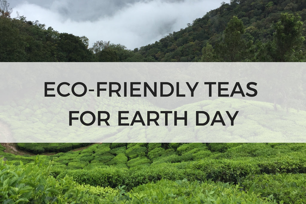 Eco-friendly Tea Options for Earth Day