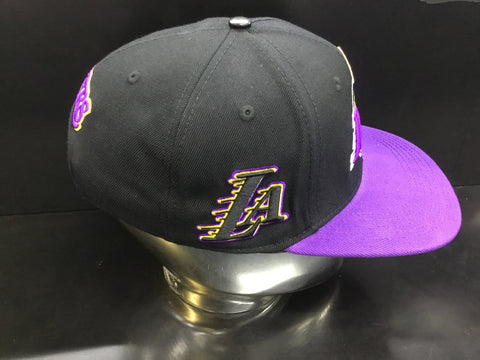 Pro standard Los Angeles Lakers hat