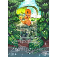 Charmander 1/70 Sun & Moon Dragon Majesty Extended Art Custom Pokemon Card Textless Silver