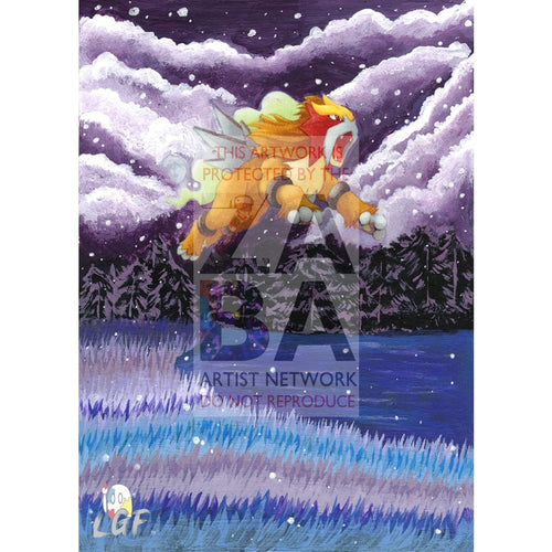 Entei 17/64 Neo Revelation Extended Art Custom Pokemon Card Silver Holo