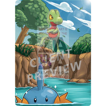 Treecko Xy36 Promo Extended Art Custom Pokemon Card Silver Holographic Textless