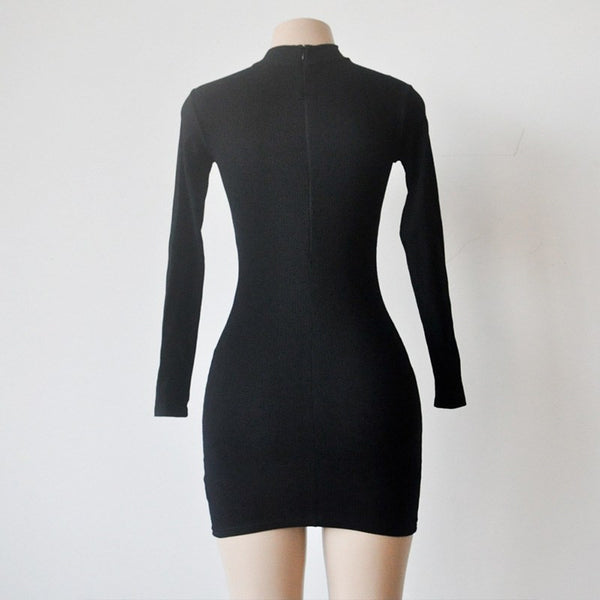 Autumn Winter Knitting Dress Long Sleeve Sexy Dress - amazingbigdiscounts