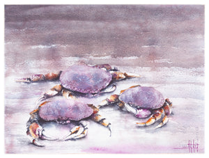 Cast of Crabs *Fine Art Prints