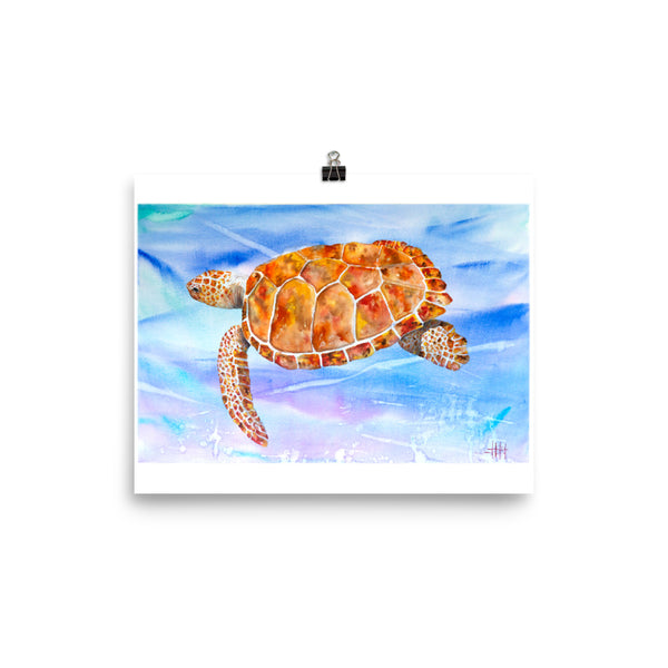 Sedona Sea Turtle *Fine Art Prints!
