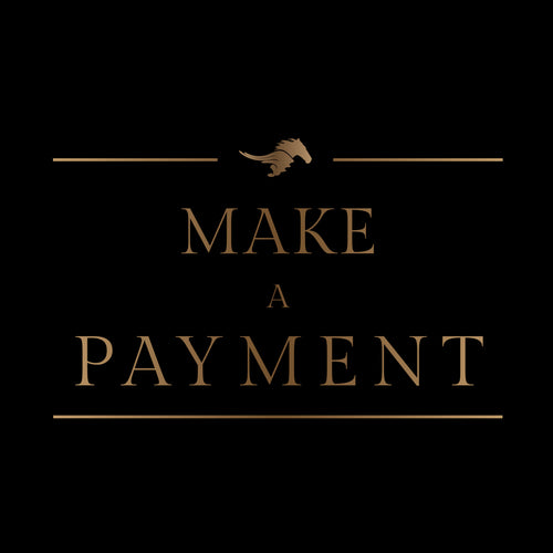 MAKE A PAYMENT<br/> Various options from
