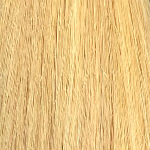Ash Platinum color swatch by SL raw Virgin Hair