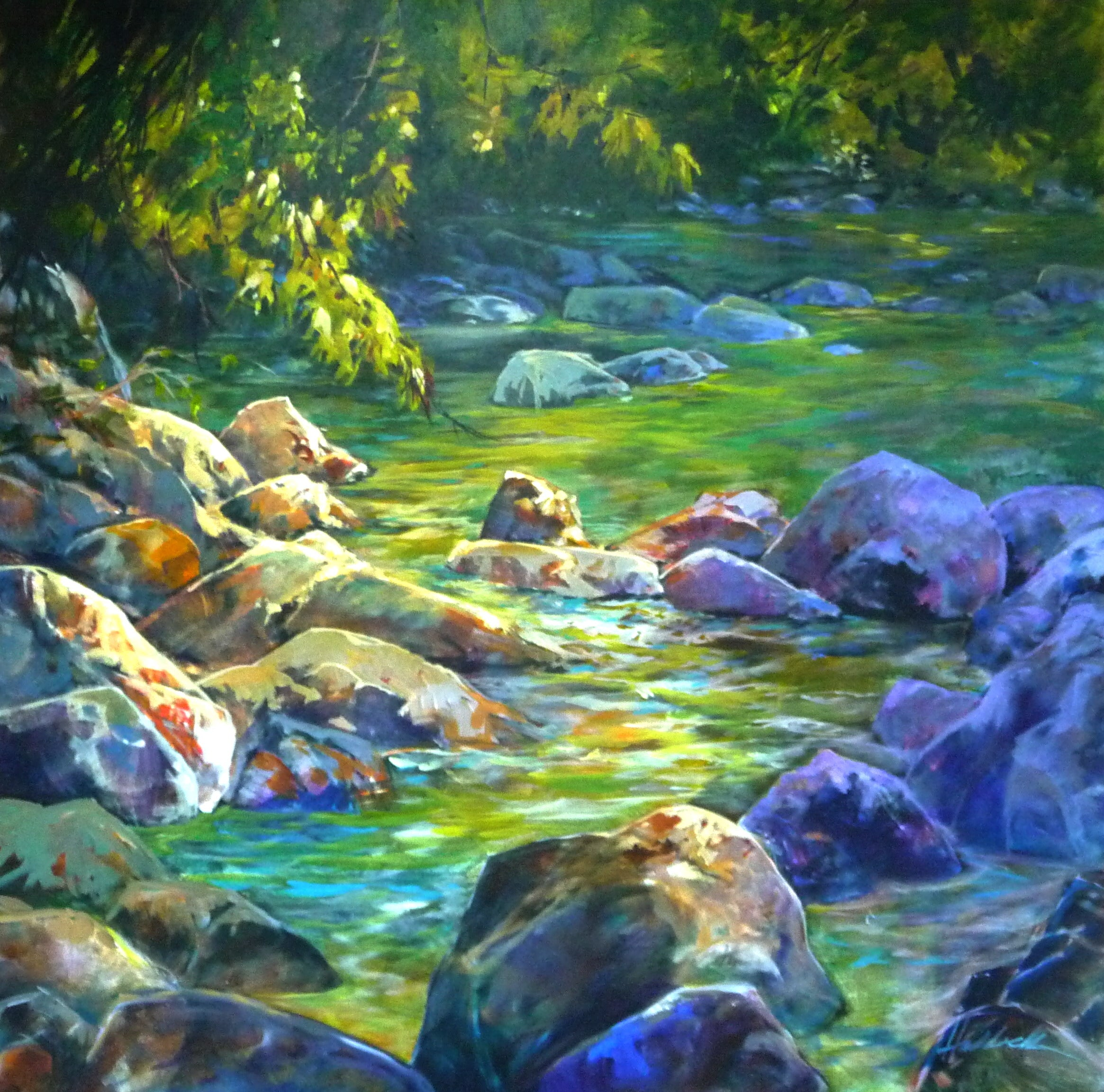 Dappled Light, Shannon Falls by Perry Haddock