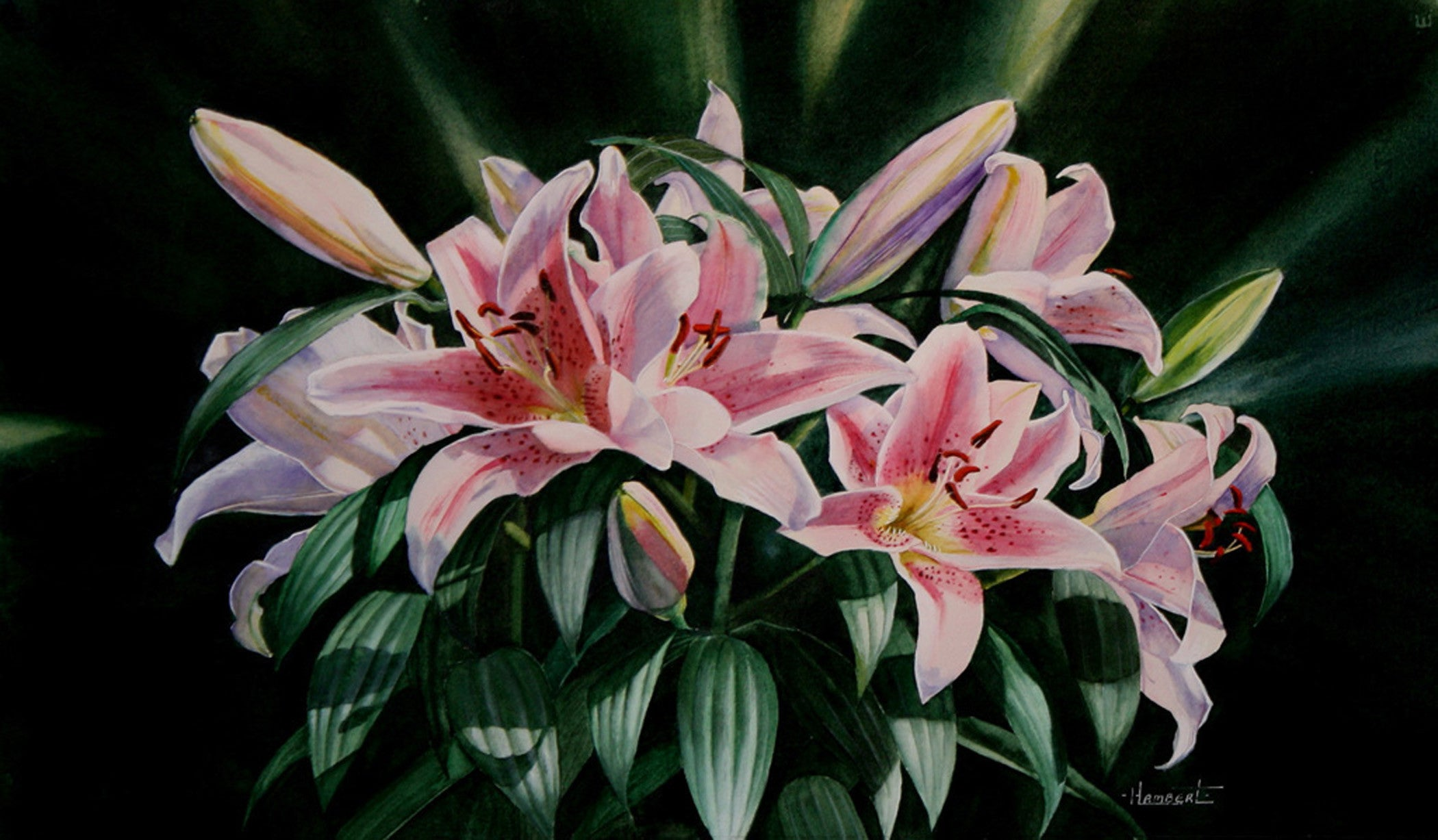 Crowns and Lilies by Heidi Lambert