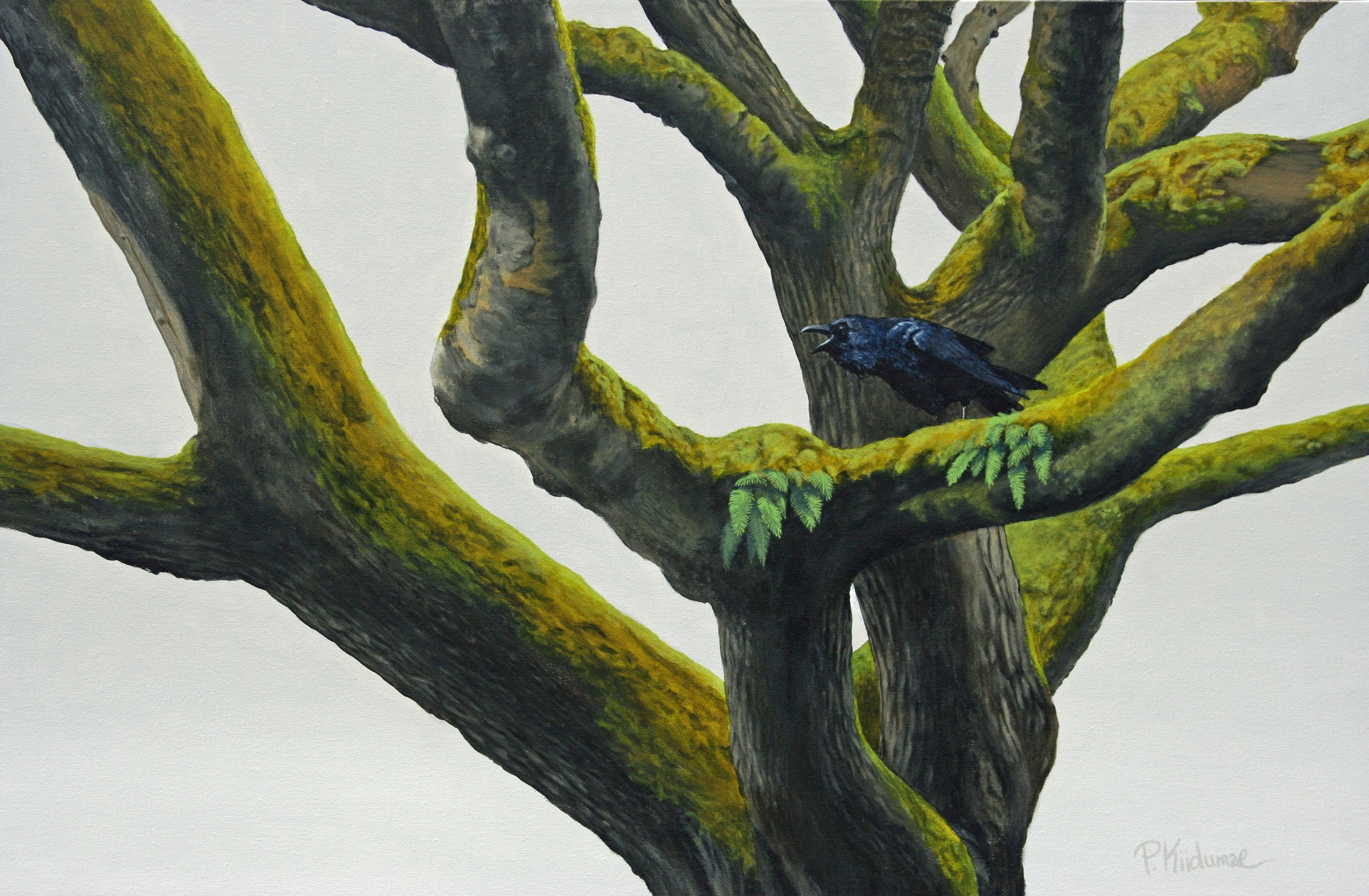 Raven Tree by Peter Kiidumae