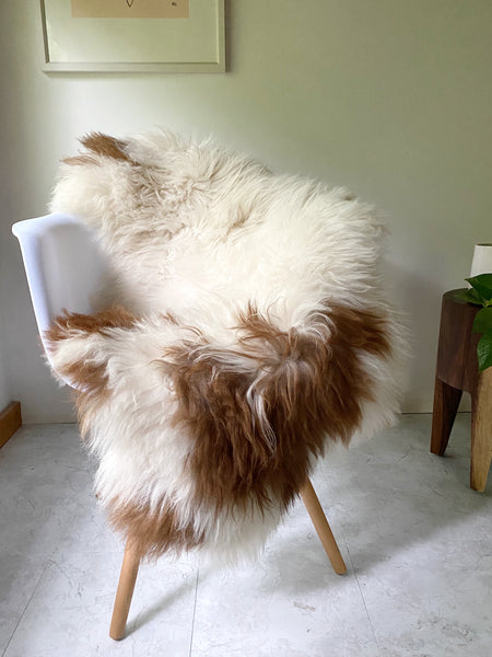 Plush Longhair White Sheepskin with Auburn Patches