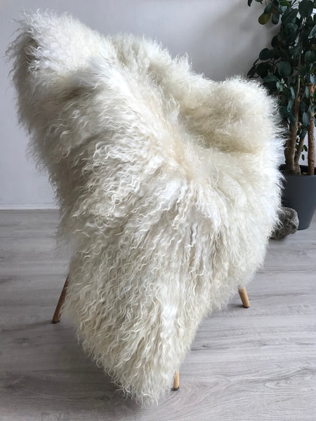 Golden Fleece Large Longhair Gotland