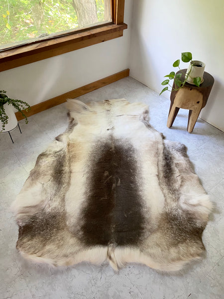 Natural Reindeer Hide #5 (XXL Sami Tribe)