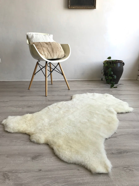 XL Shorthair Golden Ivory Sheepskin