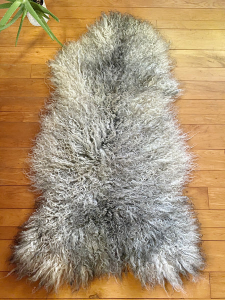 XL Silver and Grey Longhair Gotland