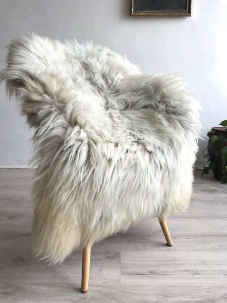Ivory Sheepskin Icelandic with Grey Roots