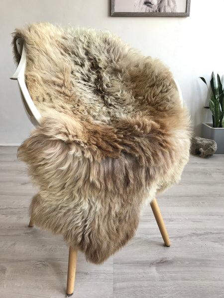 Mixed Color and Texture Sheepskin