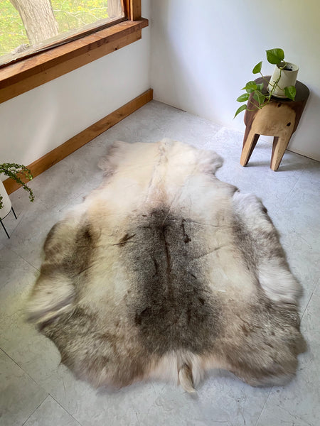 Natural Reindeer Hide #6 (XXL Sami Tribe)