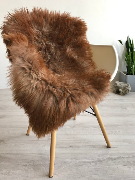 Auburn Sheepskin with Grey Roots